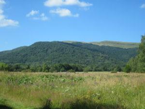 Widok na Tarnice