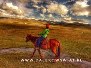 konie nad Song Kul