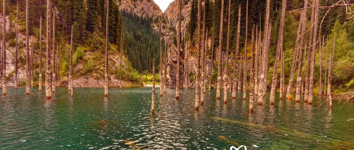 Galeria zdjęć - Kazachstan jezioro Kaindy
