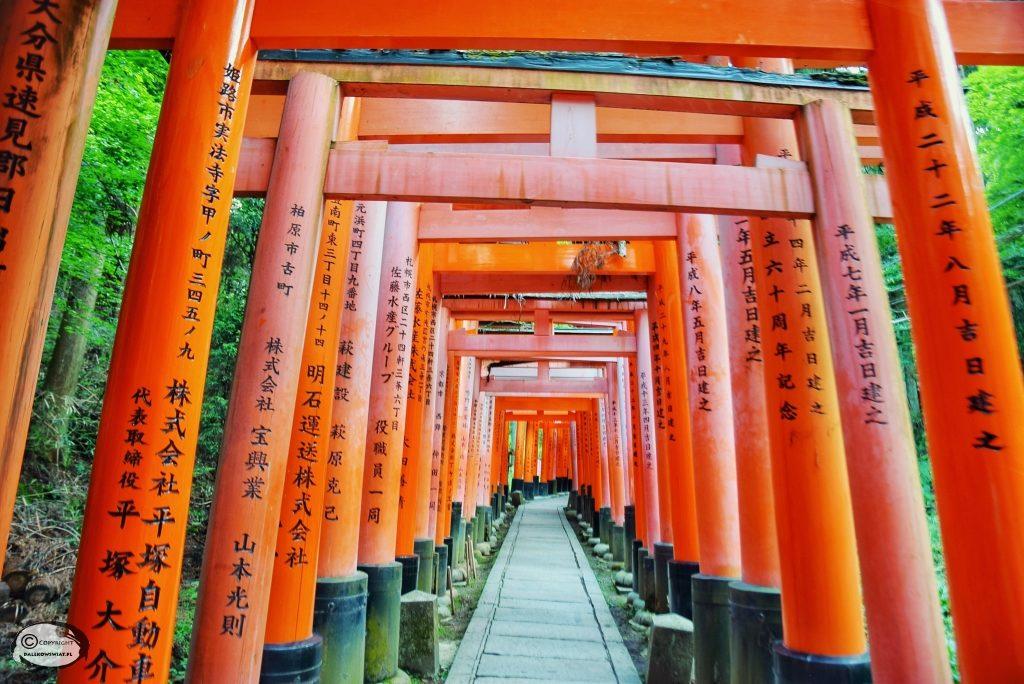 bramy taroko, fushimi Inari