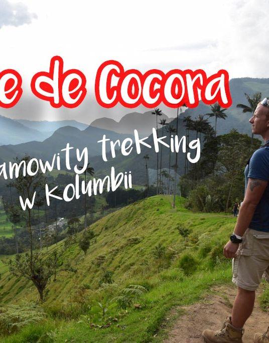 Kolumbia Valle de Cocora - kompletny poradnik, wszystko co musisz wiedzieć