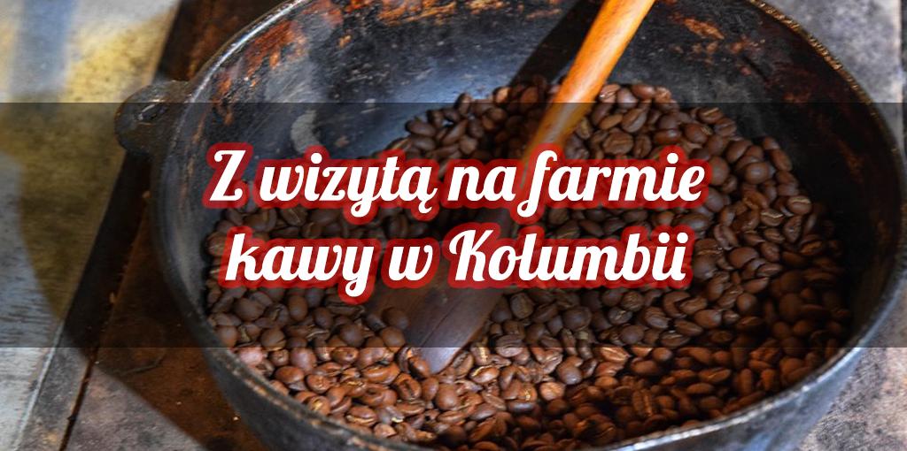 Jak się robi kawę, czyli wizyta na organicznej uprawie kawy w Kolumbii