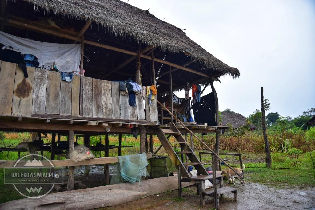 Dom w dorzeczu amazonki