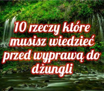 10 rzeczy ktore musisz wiedziec przed wyprawa do dzungli