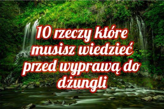 10 rzeczy które musisz wiedzieć przed wyprawą do dżungli