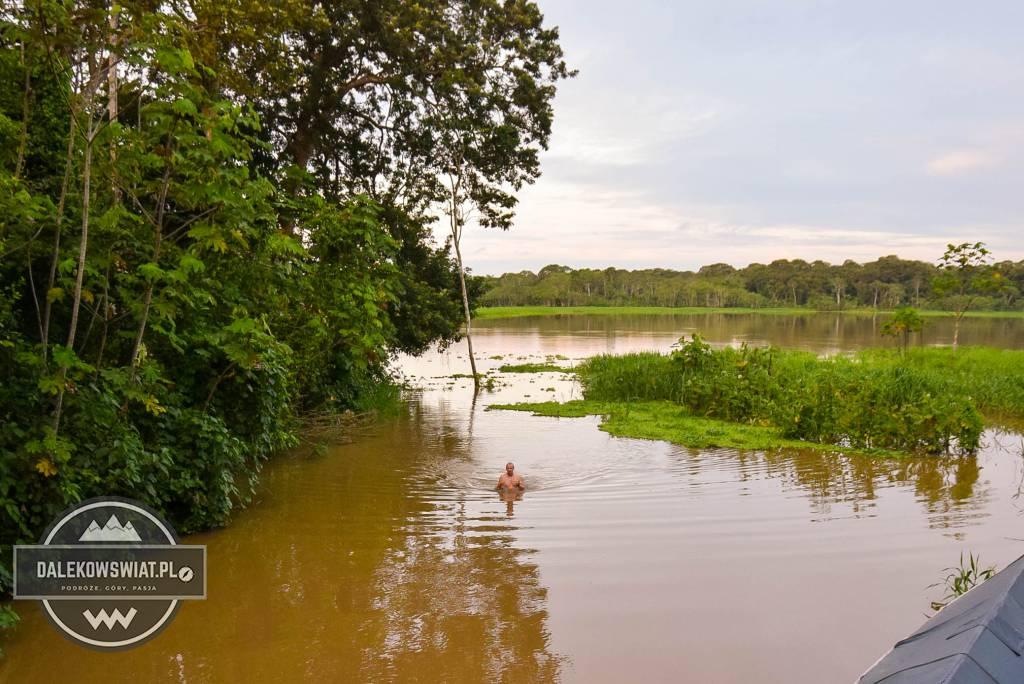 dżungla amazońska w peru