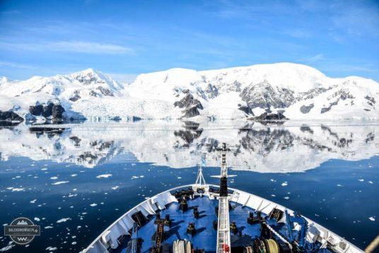 Jak zorganizować wyprawę na Antarktydę