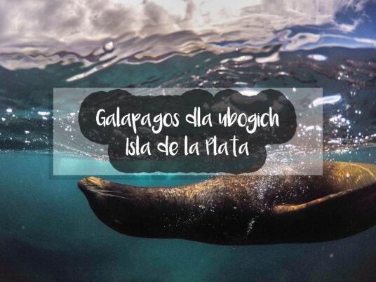 Galapagos dla ubogich - Isla de la Plata